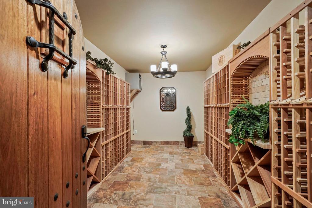 Large Wine Cellar - 4389 OLD DOMINION DR, ARLINGTON