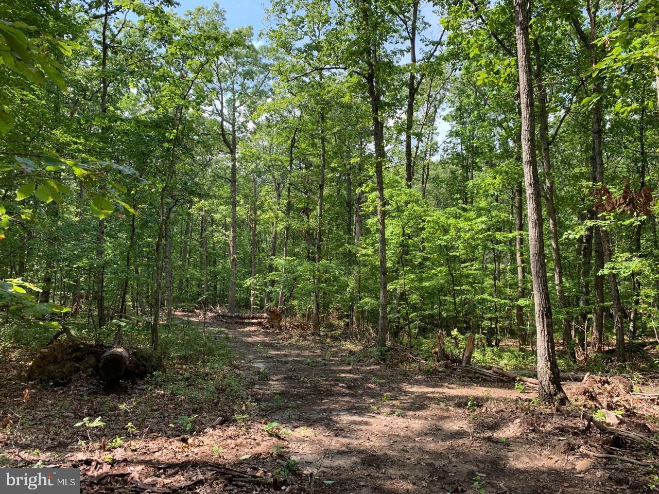 Terreno por un Venta en Unionville, Virginia 22567 Estados Unidos