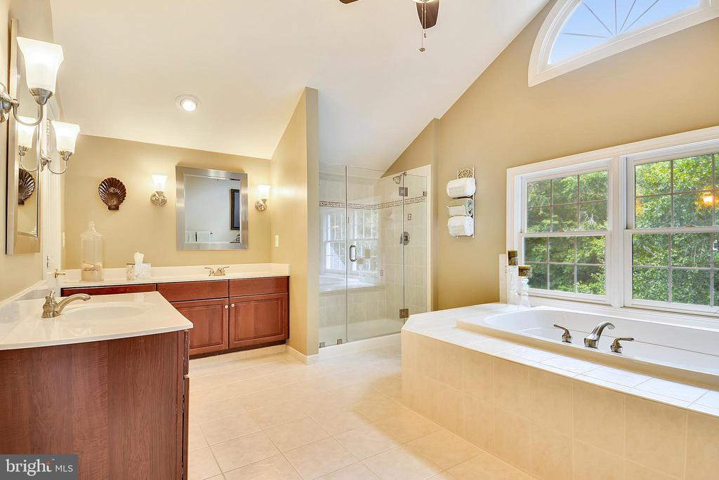 Master Bathroom w/Palladian Window - 11364 JACKRABBIT CT, POTOMAC FALLS