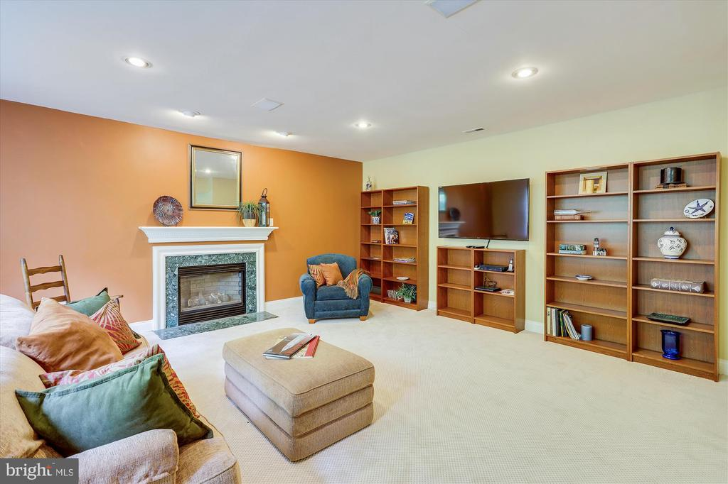 Recreation Room in Lower Level with Gas Fireplace - 11364 JACKRABBIT CT, STERLING
