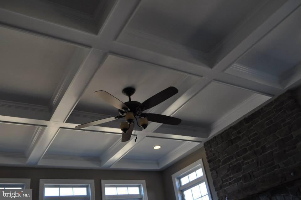 Family Rm-Ex1-Ceiling Fan-Option-Coffered Ceiling - 11950 HONEY GROVE TRL, NOKESVILLE