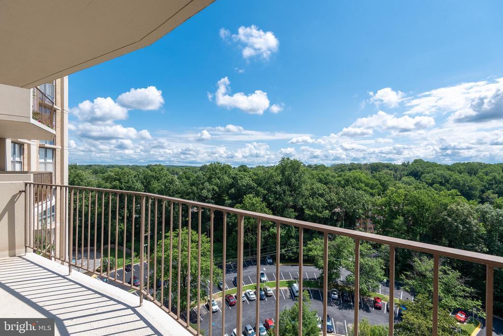 16th Floor View to Garden Hardscape & Fountain - 9039 SLIGO CREEK PKWY #1610, SILVER SPRING