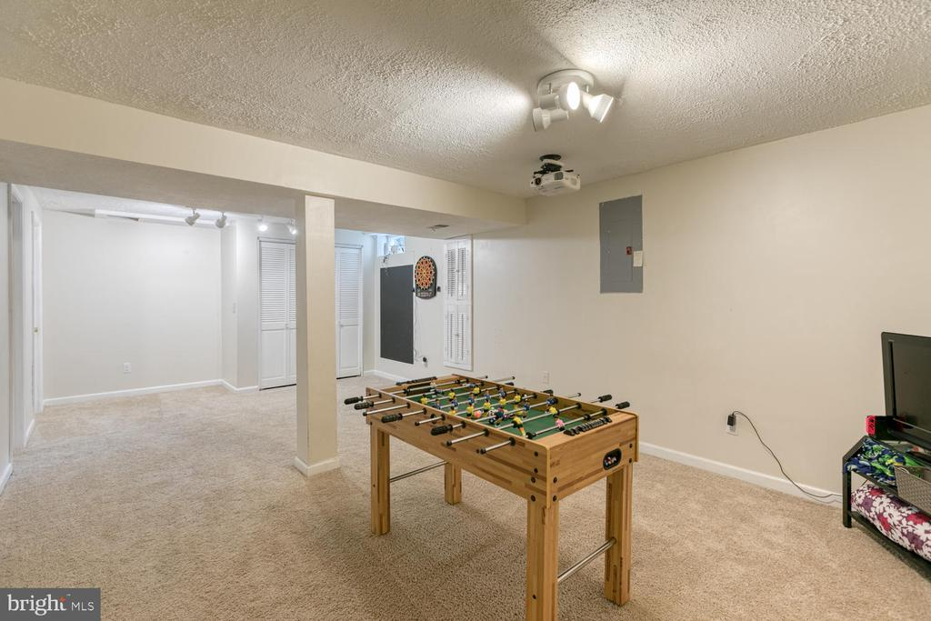 Finished basement with plenty of room to relax! - 3006 LUSITANIA DR, STAFFORD