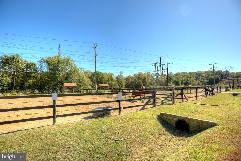 Bring your horses too! - 3006 LUSITANIA DR, STAFFORD