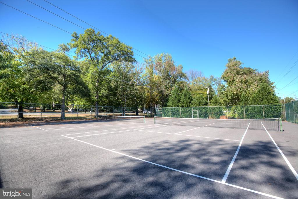 Got game? Bring it to the courts! - 3006 LUSITANIA DR, STAFFORD