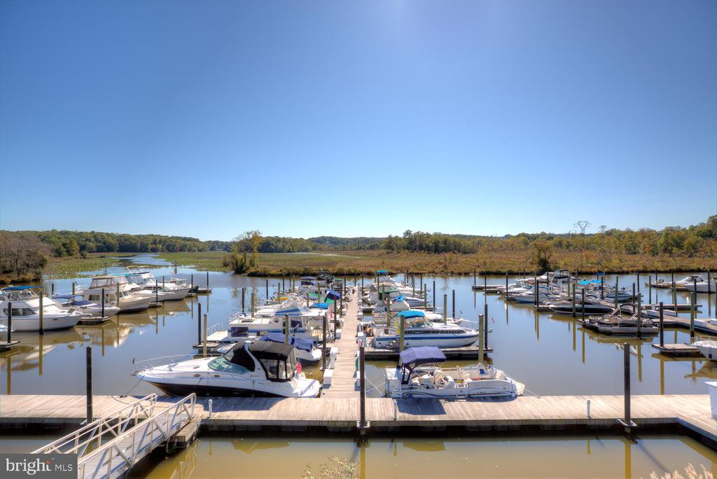 Have a boat? No problem! - 3006 LUSITANIA DR, STAFFORD