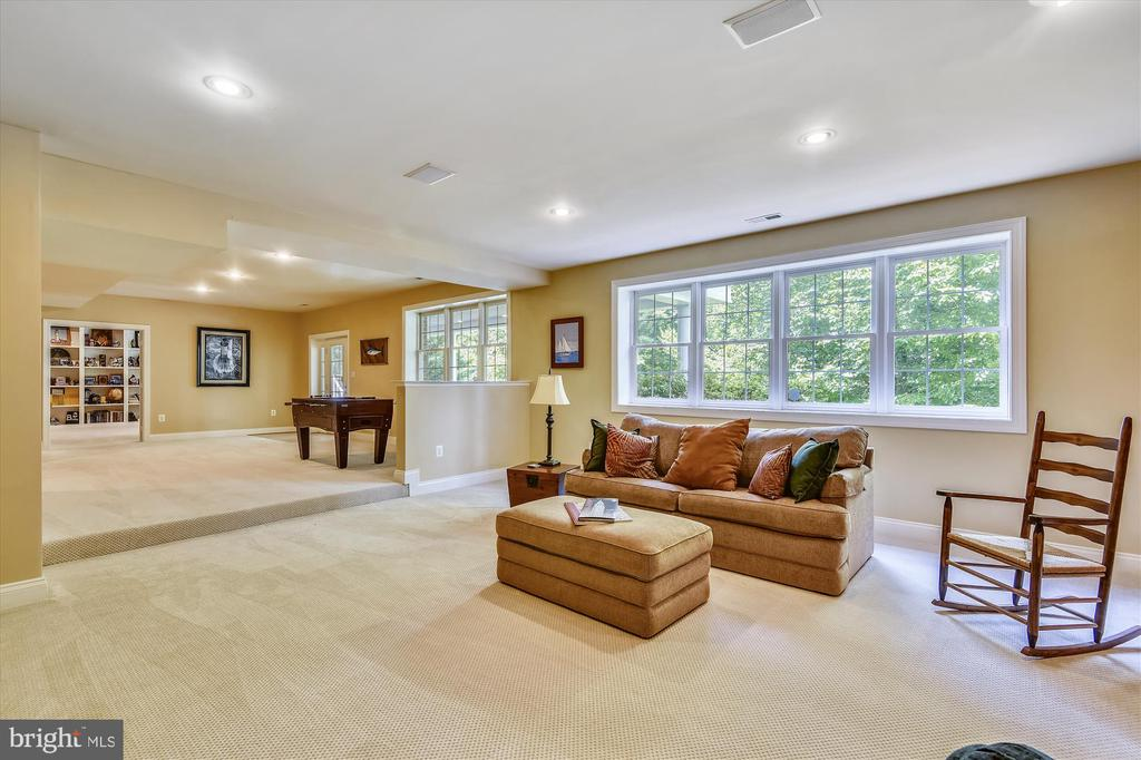 Recreation Rm View 2 w/tons of natural daylight - 11364 JACKRABBIT CT, POTOMAC FALLS