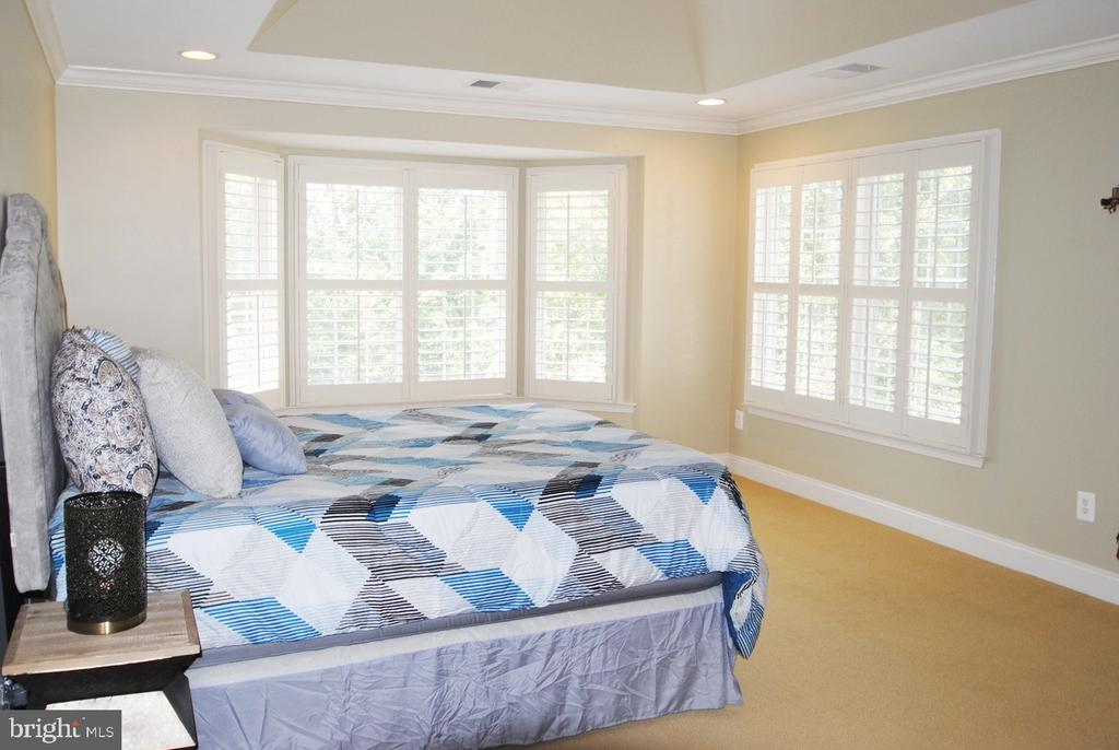 Master Bedroom with Bay Window and Tray Ceiling - 20165 BANDON DUNES CT, ASHBURN