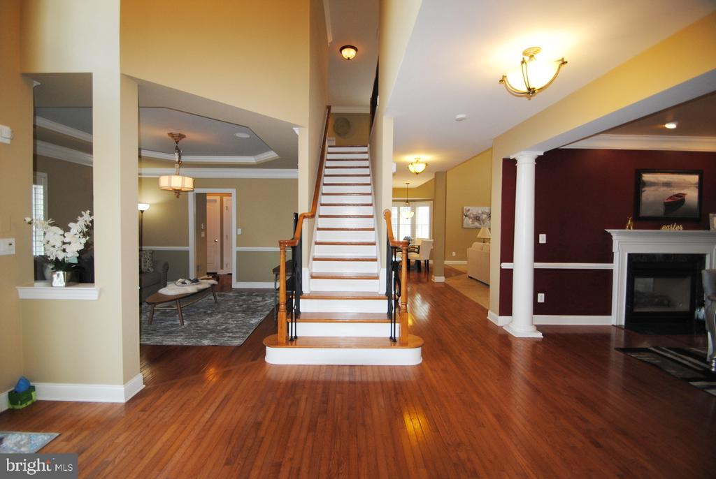 Two Level Foyer - Bright and Open - 20165 BANDON DUNES CT, ASHBURN