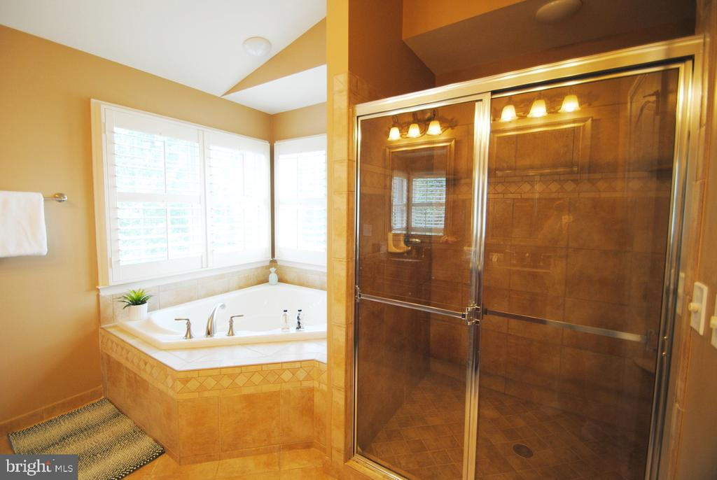 Master Bath w/ Double Sink, Triangle Tub & Shower - 20165 BANDON DUNES CT, ASHBURN