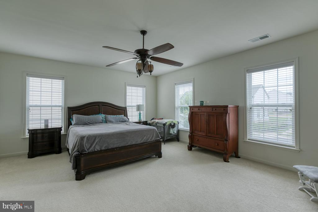 Master Suite with plenty of natural light - 517 APRICOT ST, STAFFORD
