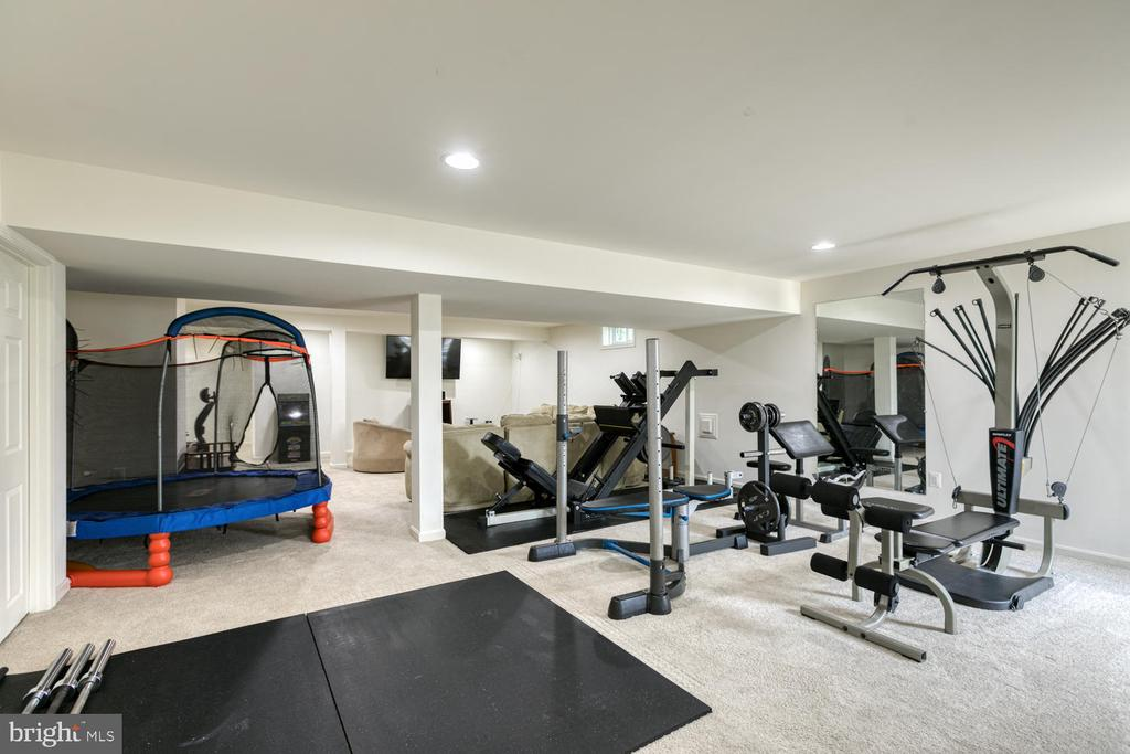 Gym in basement - 517 APRICOT ST, STAFFORD