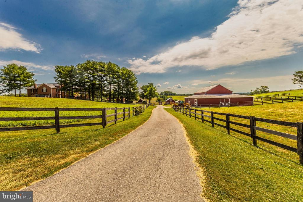 Looking from horse barn to front of property - 7030 DRUMMINE RD, MOUNT AIRY