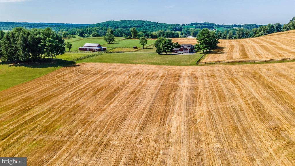 Over 130 tillable rich acres of farm ground - 7030 DRUMMINE RD, MOUNT AIRY
