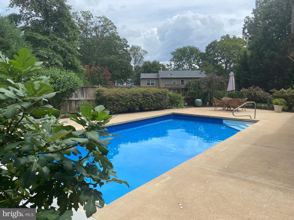 Large in-ground pool - 8333 BLOWING ROCK RD, ALEXANDRIA