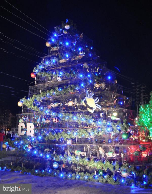 Light Up The Town Chesapeake Beach at Christmas - 3216 INA CHASE, CHESAPEAKE BEACH