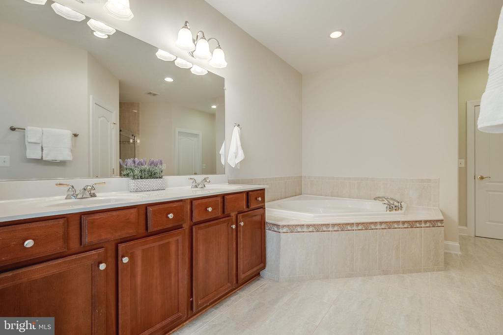 Master Bathroom, double vanity with Jacuzzi Tub - 18857 ACCOKEEK TER, LEESBURG