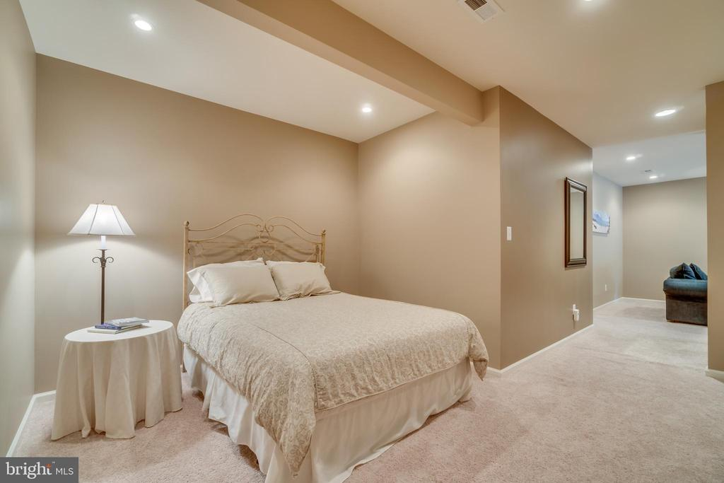Bedroom/Den area on lower level - 19920 HAZELTINE PL, ASHBURN