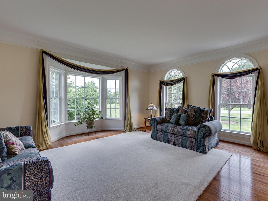 Living Room with Bay window. - 42294 IRON BIT PL, CHANTILLY
