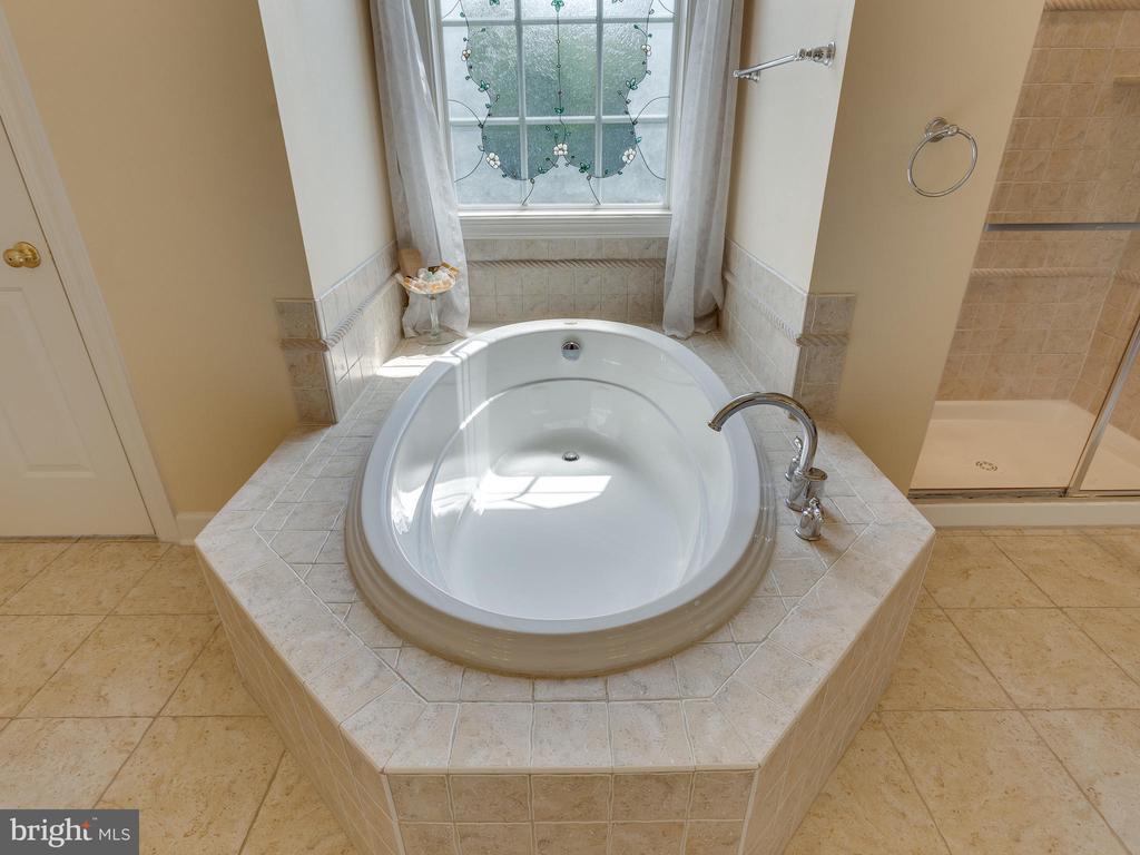 Soaking Tub. - 42294 IRON BIT PL, CHANTILLY
