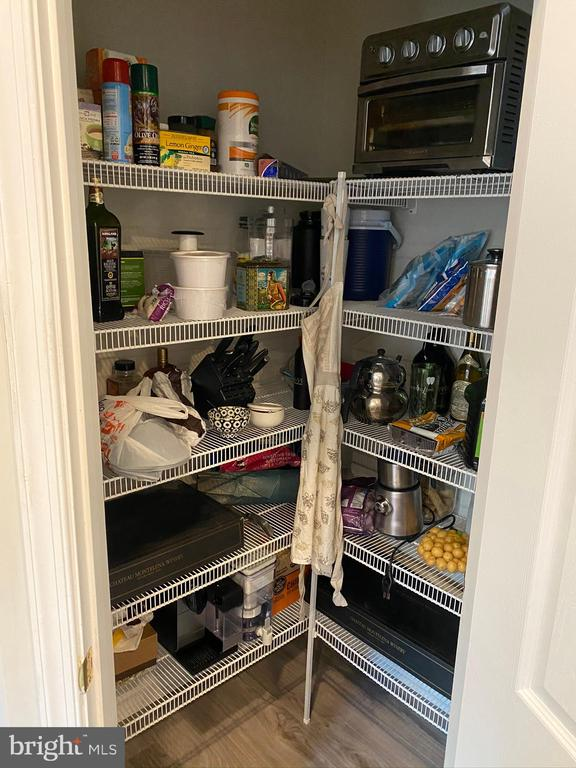 Generous pantry - 42939 PARK BROOKE CT, BROADLANDS