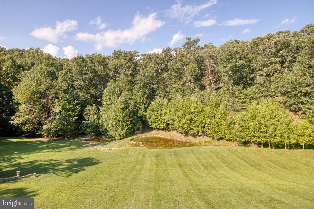 View from back deck - 14016 HARRISVILLE RD, MOUNT AIRY