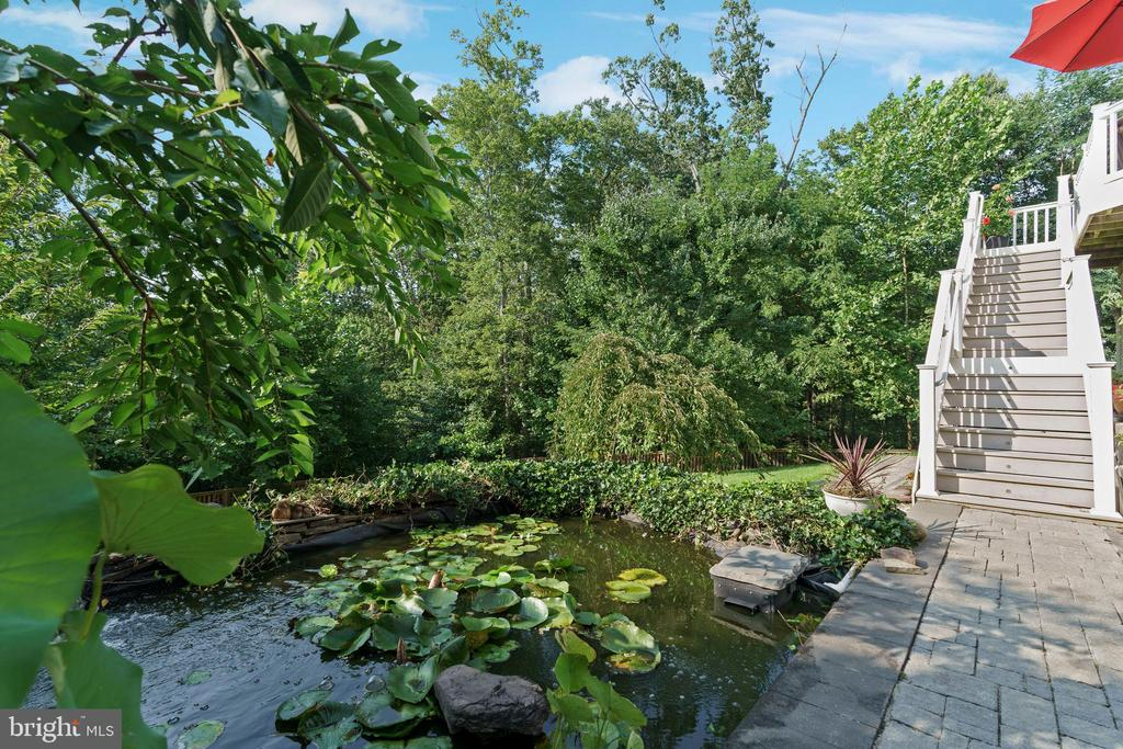 Koi pond and fruit trees in fenced yard. - 12 BLOSSOM TREE CT, STAFFORD