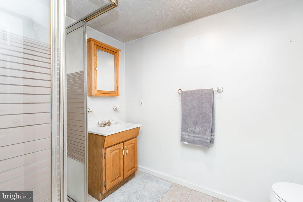 Full bath on the lower level - 39 CONIFER CT, HARPERS FERRY