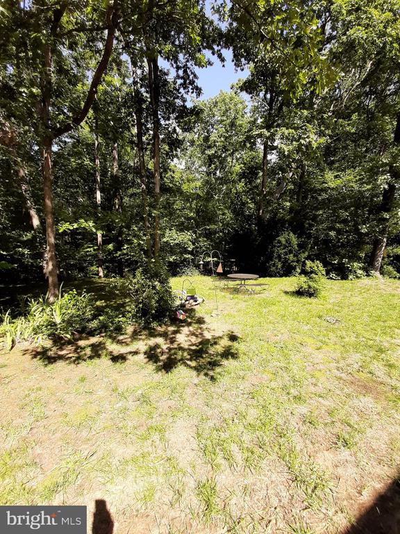 Private rear View of Park Setting - 441 GREENBRIER CT #441, FREDERICKSBURG