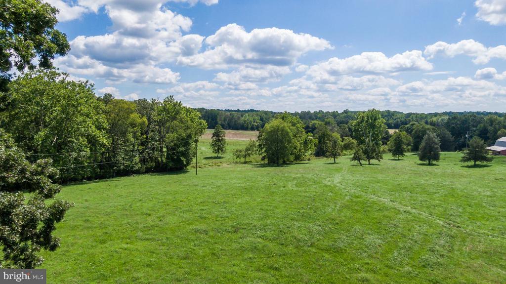 Beautiful fields - 50 CEDAR OAKS LN, FREDERICKSBURG