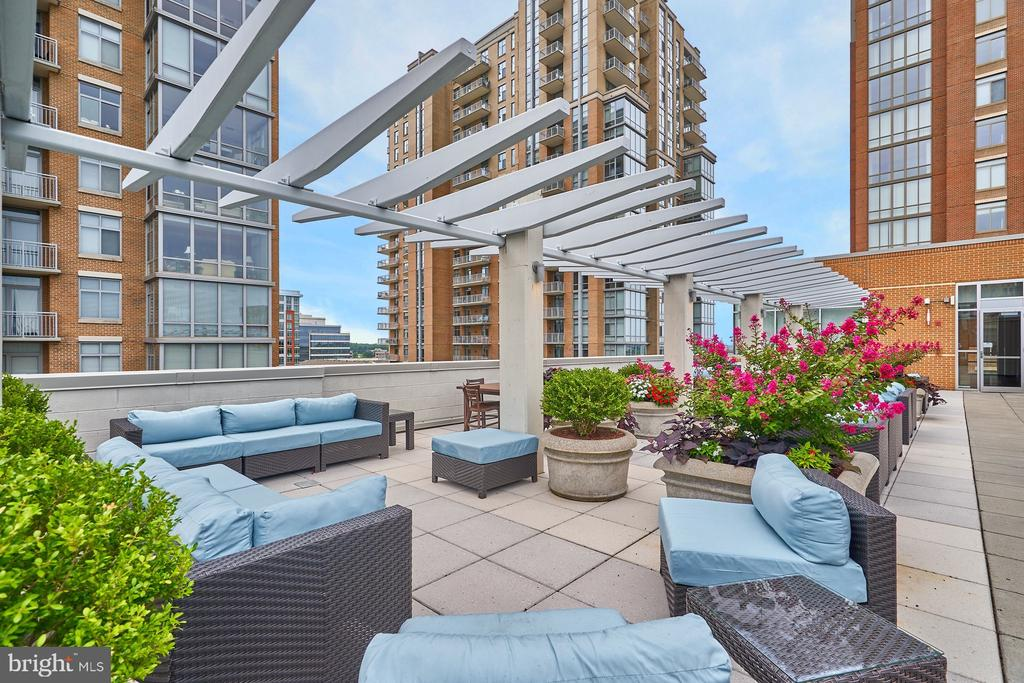 Rooftop Terrace - 12025 NEW DOMINION PKWY #G-118, RESTON
