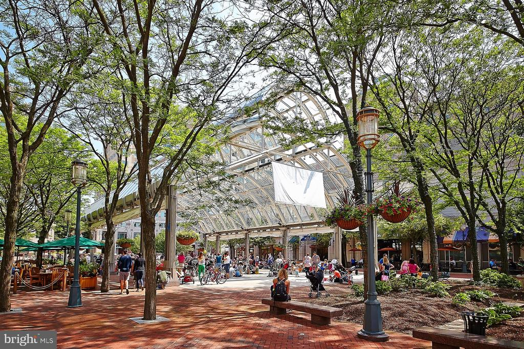 Outdoor space in Reston Town Center - 12025 NEW DOMINION PKWY #G-118, RESTON