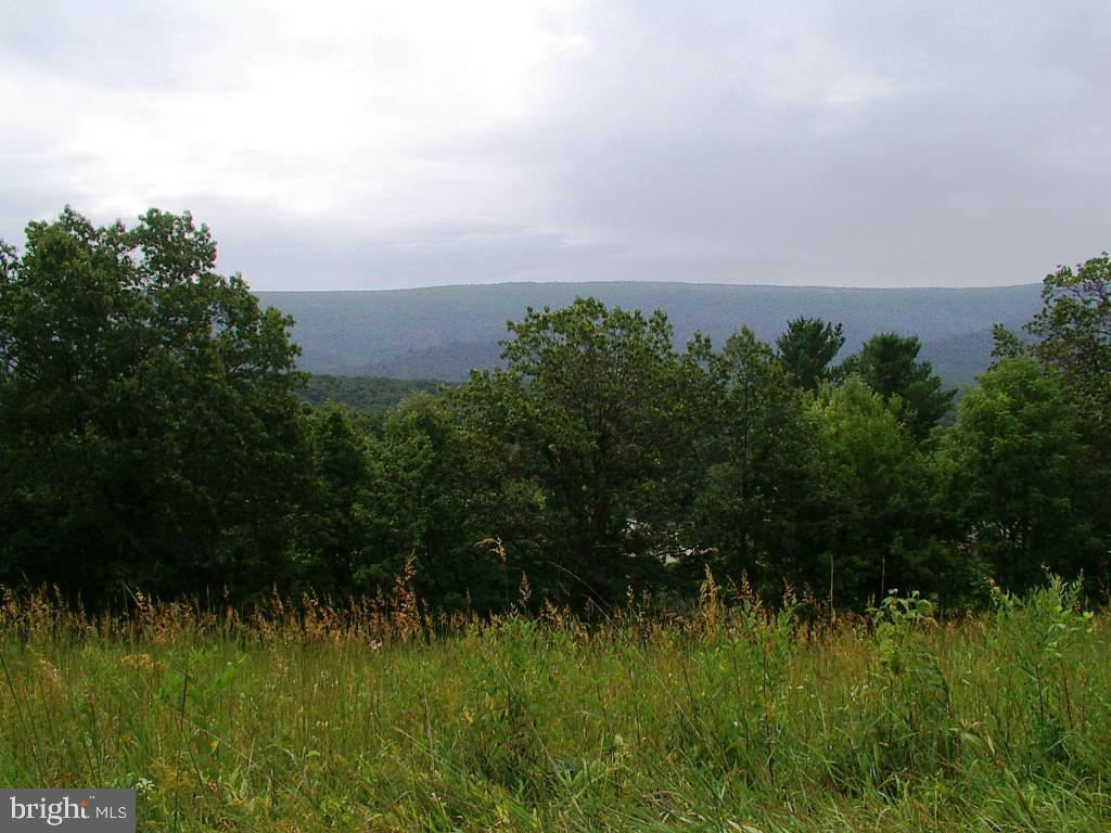 Land for Sale at High View, West Virginia 26808 United States