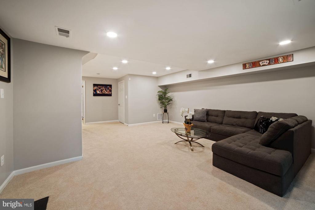 Family Room Offers Terrific, Usable, Bonus Space - 8486 SPRINGFIELD OAKS DR, SPRINGFIELD