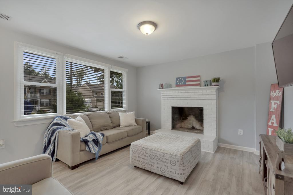 Lower level family room - 19133 WINDSOR RD, TRIANGLE
