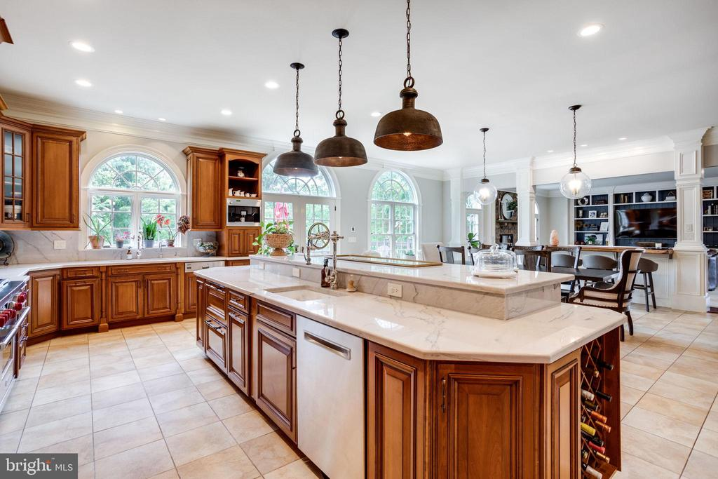 Chef's Kitchen with Extensive Upgrades - 17814 RUNNING COLT PL, LEESBURG