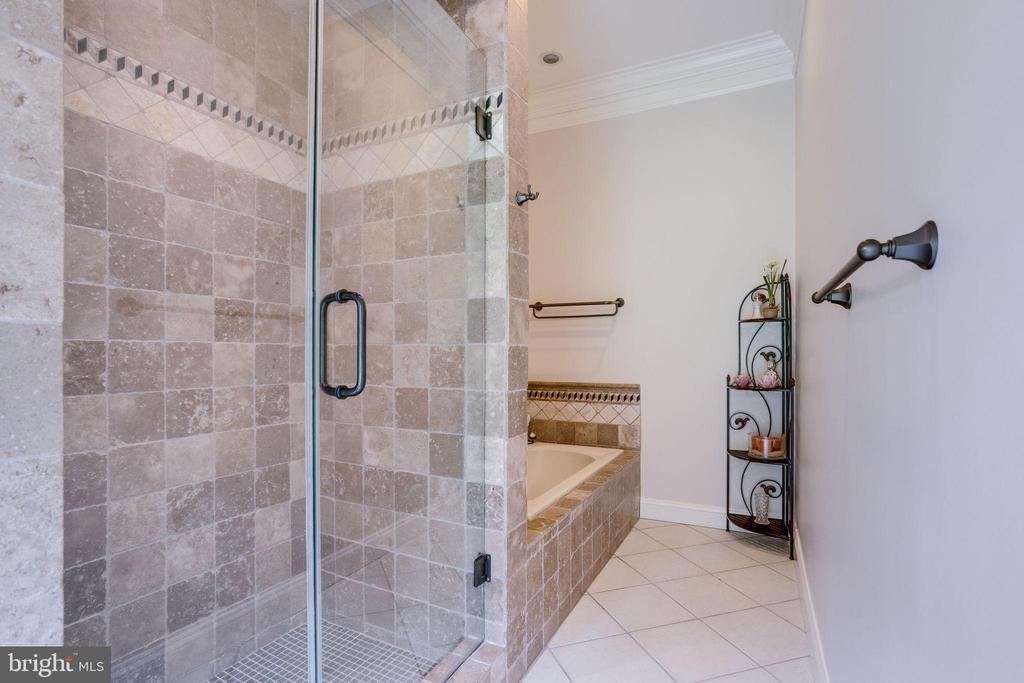 Custom Stonework in Bedroom 5 Private Bathroom - 17814 RUNNING COLT PL, LEESBURG