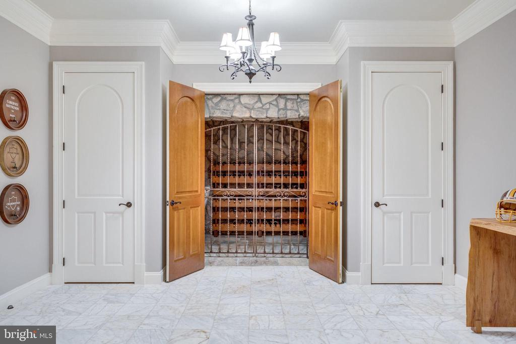 Entrance to Stone Wine Cellar - 17814 RUNNING COLT PL, LEESBURG