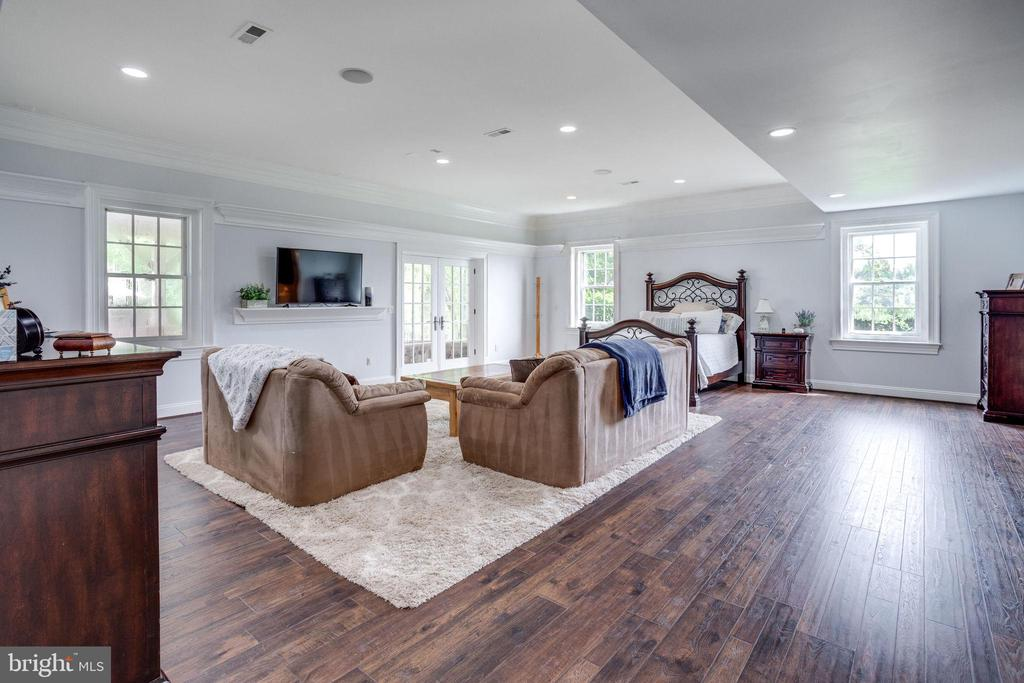 Bedroom 6 in Basement with Walk-Out to Pool Deck - 17814 RUNNING COLT PL, LEESBURG