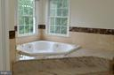 Master bath -Jacuzzi - 20057 BLACKWOLF RUN PL, ASHBURN