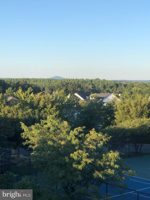 Views of Sugarloaf Mountain from the side of house - 18504 PINEVIEW SQ, LEESBURG