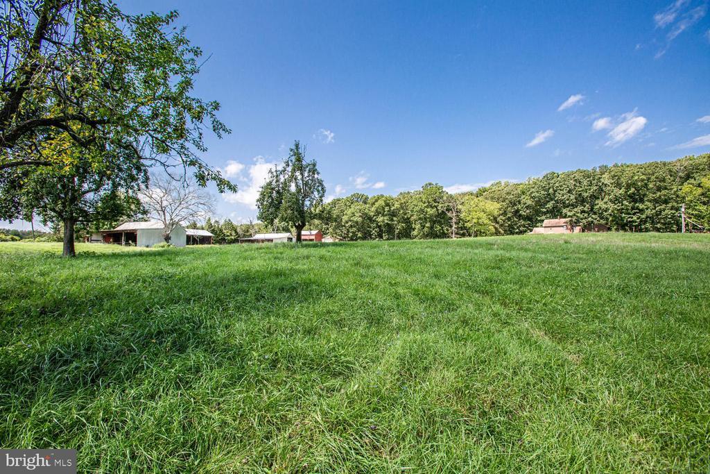 Gorgeous acreage - 50 CEDAR OAKS LN, FREDERICKSBURG