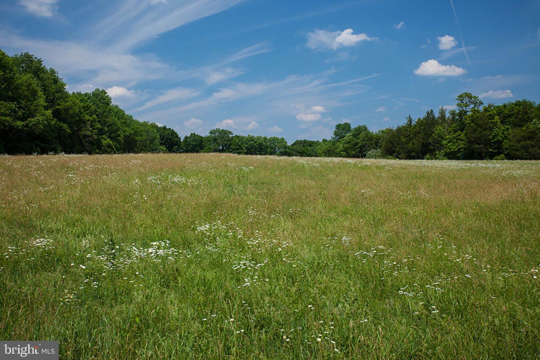 土地,用地 为 销售 在 Erwinna, 宾夕法尼亚州 18920 美国