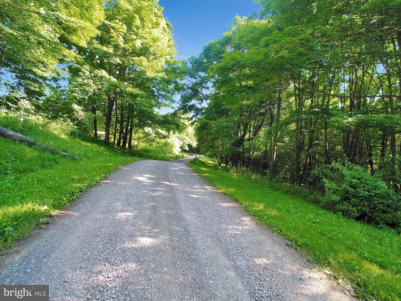 土地 為 出售 在 Grantsville, 馬里蘭州 21536 美國