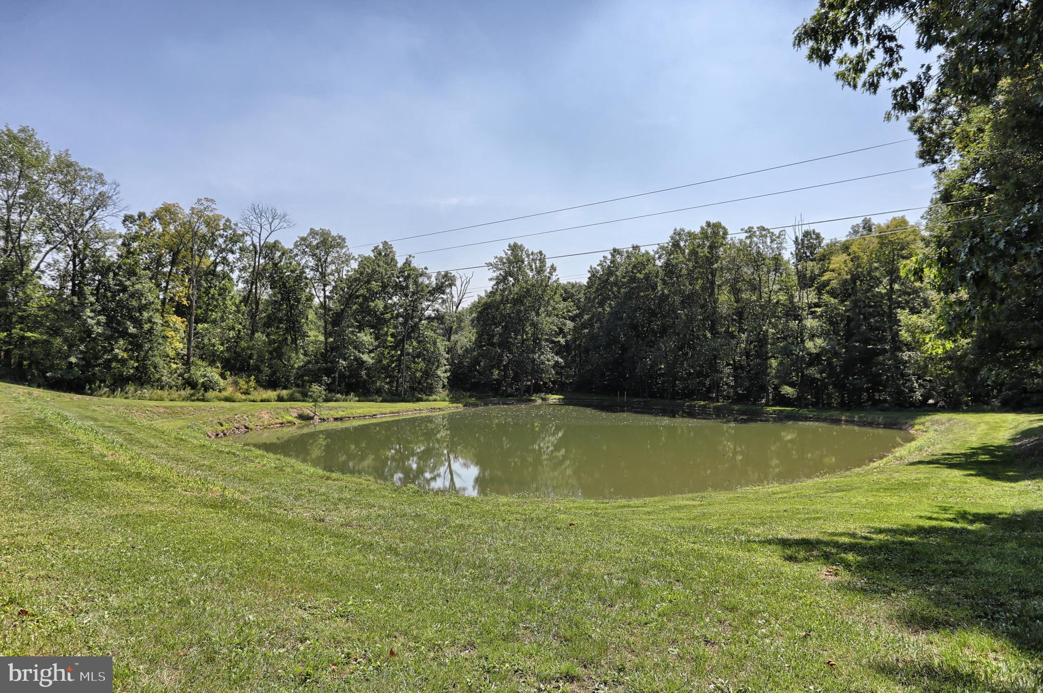 Dam to Pond
