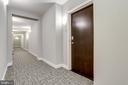 Newly renovated hallways - 1418 N RHODES ST #B414, ARLINGTON