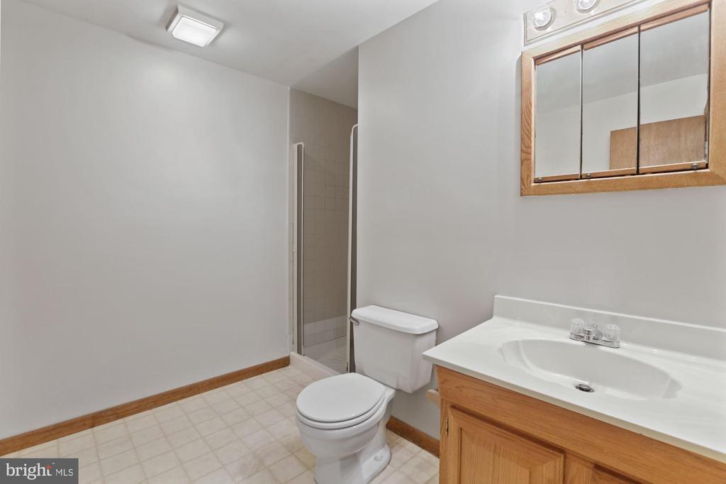 Full bath on Lower Level - 6244 COVERED BRIDGE RD, BURKE