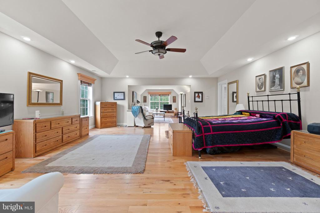 TRAY CEILING / HARDWOOD FLOORS - 108 HIGH RIDGE DR, STAFFORD