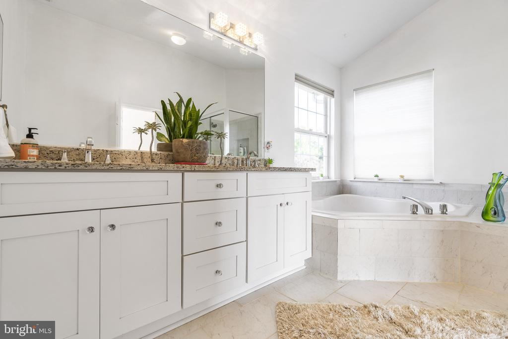 Recently renovated,granite counter,dual vanities - 20887 CHIPPOAKS FOREST CIR, STERLING
