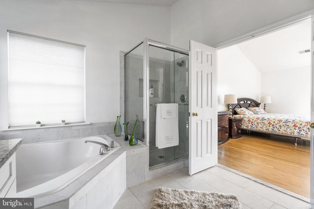 Large 2+ person tub,windows& upgraded shower door - 20887 CHIPPOAKS FOREST CIR, STERLING